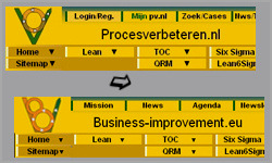 Procesverbeteren.nl lanceert zustersite business-improvement.eu
